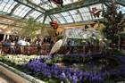 Botanic Garden of Bellagio Las Vegas